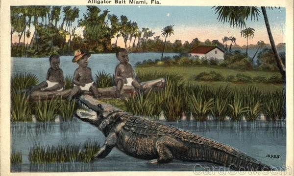 "The truth behind ""Alligator Bait"""